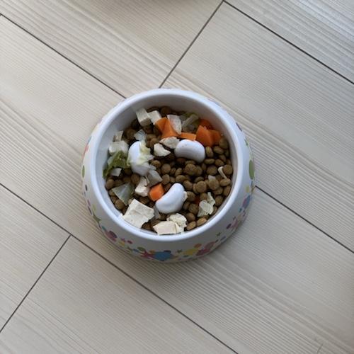 ドギーマン早食い防止食器に入れた犬のご飯