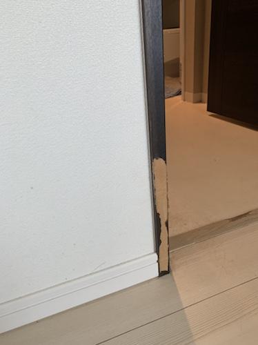 犬に表面を剥がされた柱