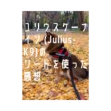 ユリウスケーナイン (Julius-K9)のリード2.2mを使った感想。持ちやすい?丈夫?